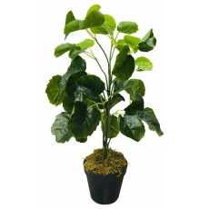 Artificial Fake Bush Flower Money Bag Plant 51cm Home Room Hall Decoration Gift